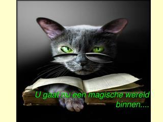 U gaat nu een magische wereld binnen....