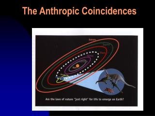 The Anthropic Coincidences