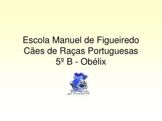 Escola Manuel de Figueiredo Cães de Raças Portuguesas 5º B - Obélix