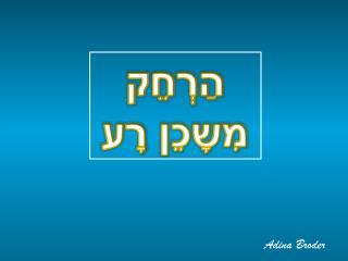 Adina Broder