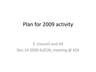 Plan for 2009 activity