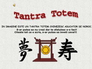 IN IMAGINE ESTE UN TANTRA TOTEM CHINEZESC ADUCATOR DE NOROC .