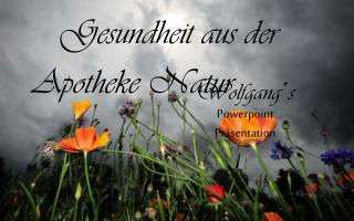 Wolfgang�s Powerpoint Pr�sentation