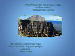 O importante não é vencer todos os dias, mas lutar sempre. Waldemar Valle Martins
