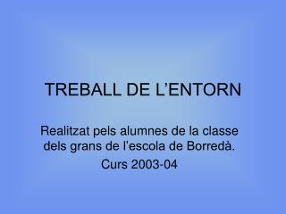 TREBALL DE L'ENTORN