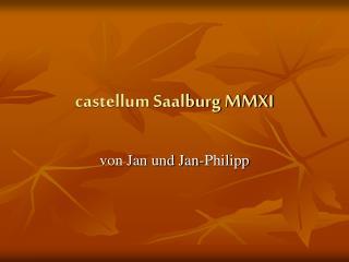 castellum Saalburg MMXI