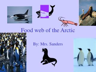 Food web of the Arctic