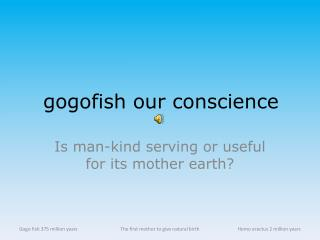 gogofish our conscience