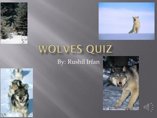 Wolves quiz