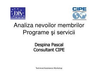 Analiza nevoilor membrilor Programe şi servicii