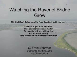 Watching the Ravenel Bridge Grow