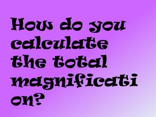 How do you calculate the total magnification?