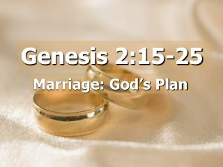 Genesis 2:15-25