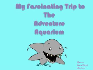 My Fa sc inating  Trip to The  Adventure  Aquarium