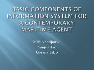 Basic Components of  Information  System for a Contemporary  Maritime  Agent