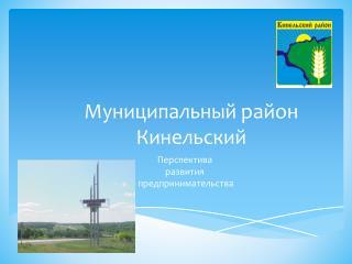Муниципальный район Кинельский