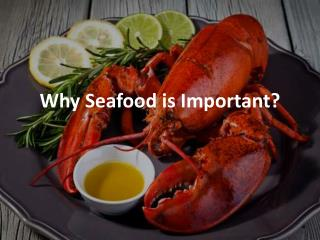 Why Seafood is Important?