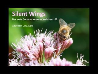 Silent Wings Der erste Sommer unseres Waldsees    Seevetal, Juli 2008