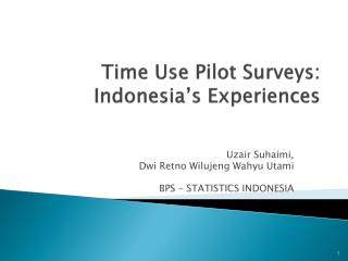 Time Use Pilot Surveys:  Indonesia's Experiences