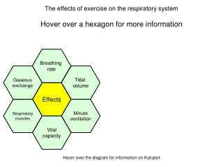 Hover over a hexagon for more information