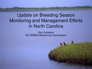 Update on Breeding Season Monitoring and Management Efforts in North Carolina