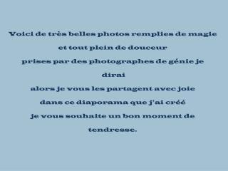 la-nature-vue-par-des-photographes
