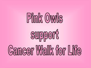 Pink Owls support Cancer Walk for Life