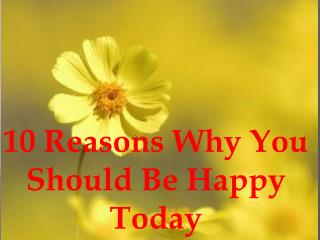 10 Reasons Why You Should Be Happy Today