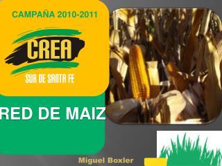 CAMPA A 2010-2011