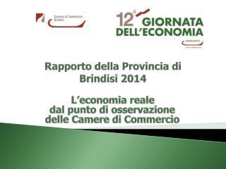 Rapporto della Provincia di Brindisi 2014