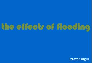 the effects  of  flooding