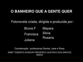 O BANHEIRO QUE A GENTE QUER