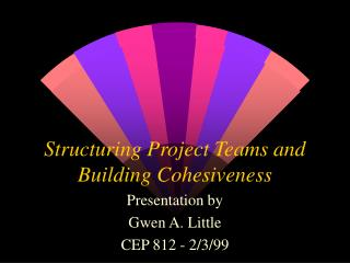 Structuring Project Teams and Building Cohesiveness