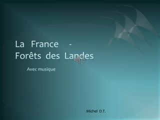 La   France     -                 Forêts  des  Landes