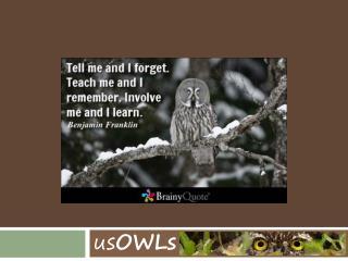 us OWLs