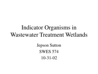 Indicator Organisms in Wastewater Treatment Wetlands