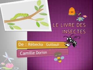 Le livre des insectes