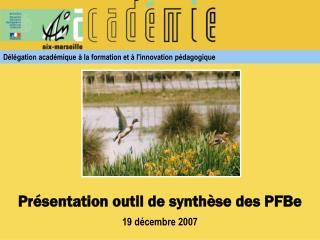 Présentation outil de synthèse des PFBe 19 décembre 2007