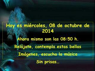 Hoy es  miércoles, 08 de octubre de 2014 Ahora mismo son las  08:50  h.