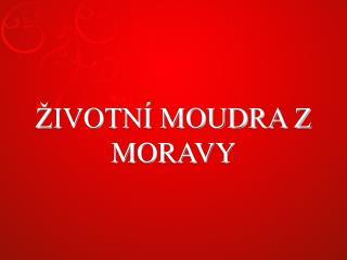 �IVOTN� MOUDRA Z MORAVY