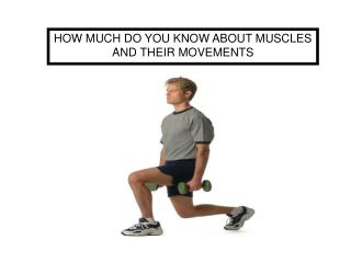 HOW MUCH DO YOU KNOW ABOUT MUSCLES AND THEIR MOVEMENTS
