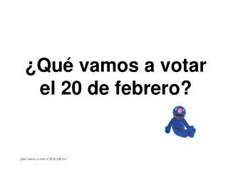 �Qu� vamos a votar el 20 de febrero?