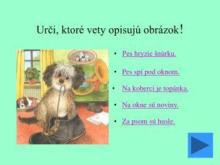 Urči, ktoré vety opisujú obrázok !