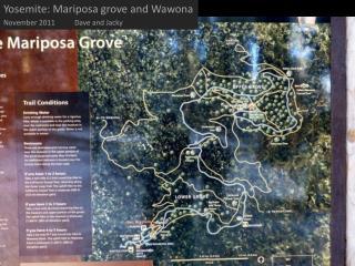 Yosemite: Mariposa grove and Wawona November  2011Dave  and Jacky