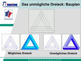 Das unmögliche Dreieck: Bauplan