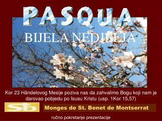 Monges de St. Benet de Montserrat