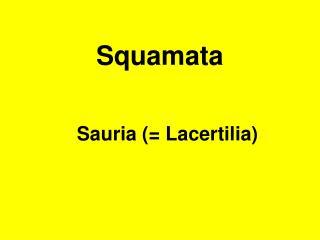 Squamata