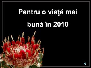 Pentru o viaţă mai bună în 2010