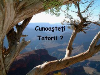 Cunoaşteţi Tatorii ?