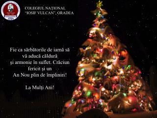 Fie ca sărbătorile de iarnă să vă aducă căldură  şi armonie în suflet. Crăciun fericit şi un